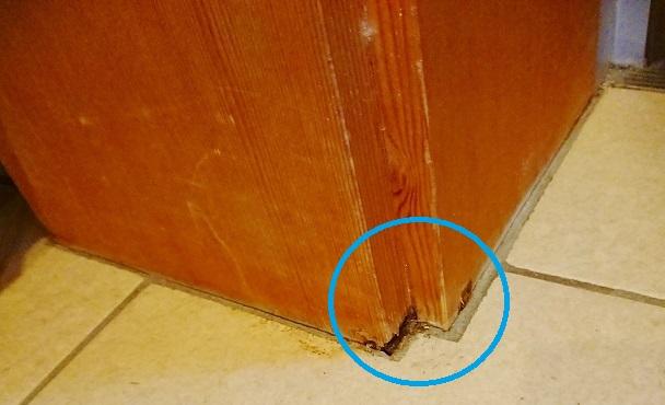 ドア枠材の床に近い部分がしろありに食われていました。